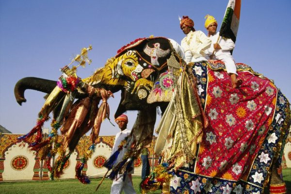 Elephant festival in jaipur rajasthani-tadka