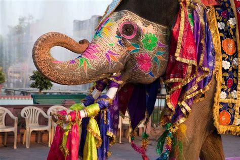 Holi-Elephant-Festival-rajasthani-tadka